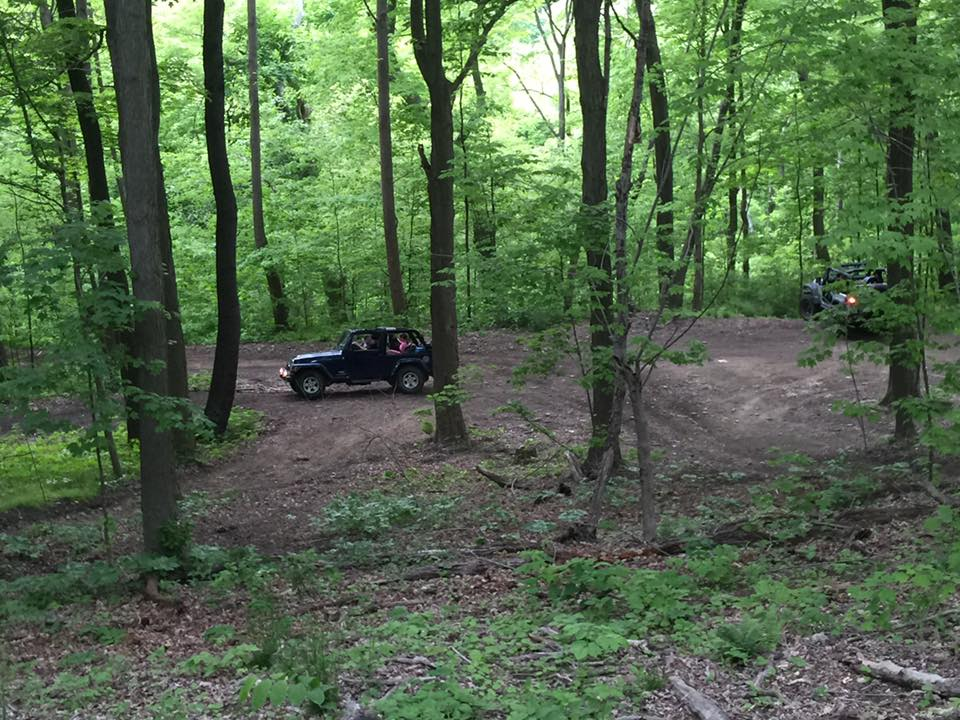 jeep-woods