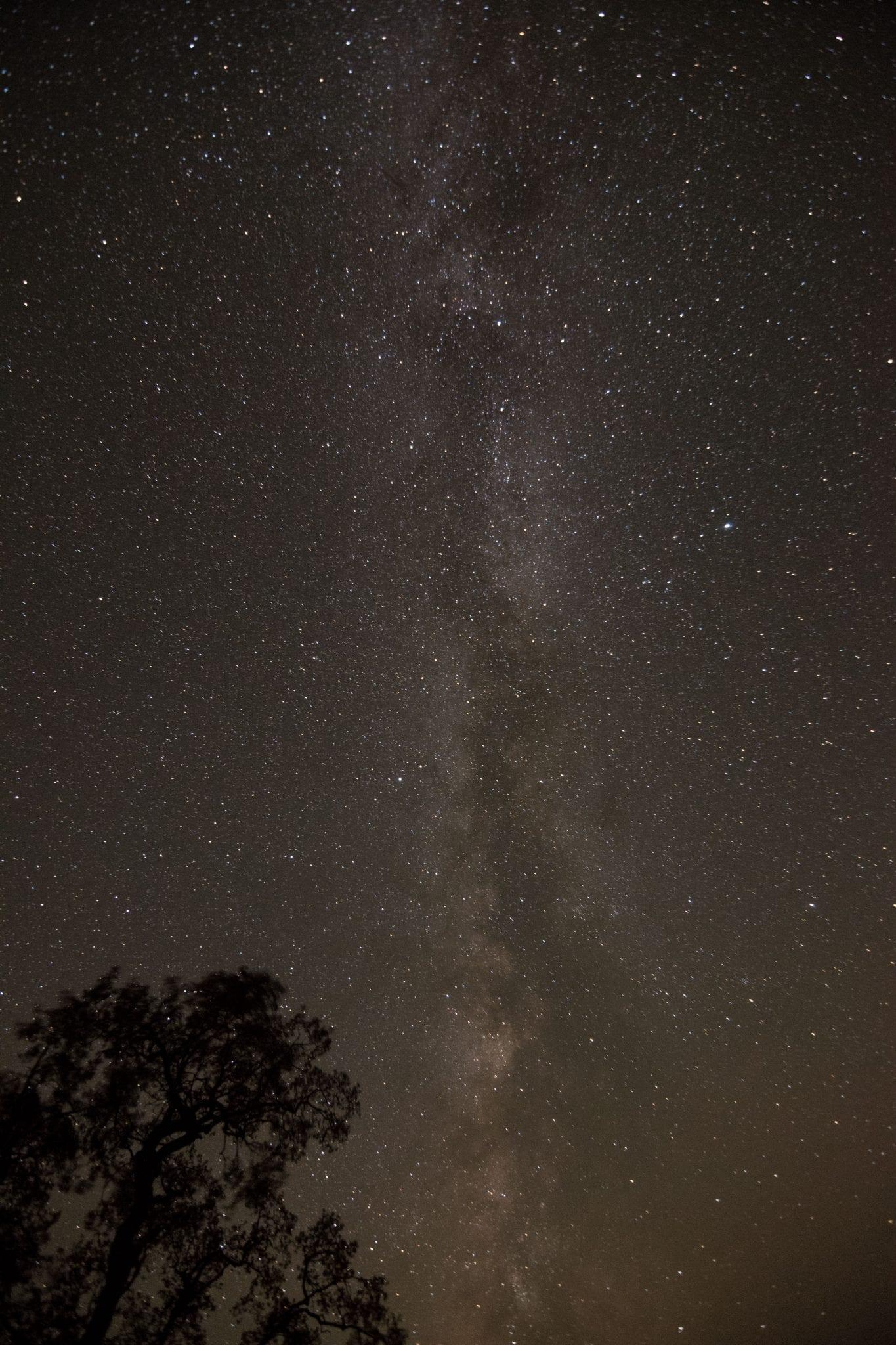 Milky Way California live oak tree pacific coast big sur starry night