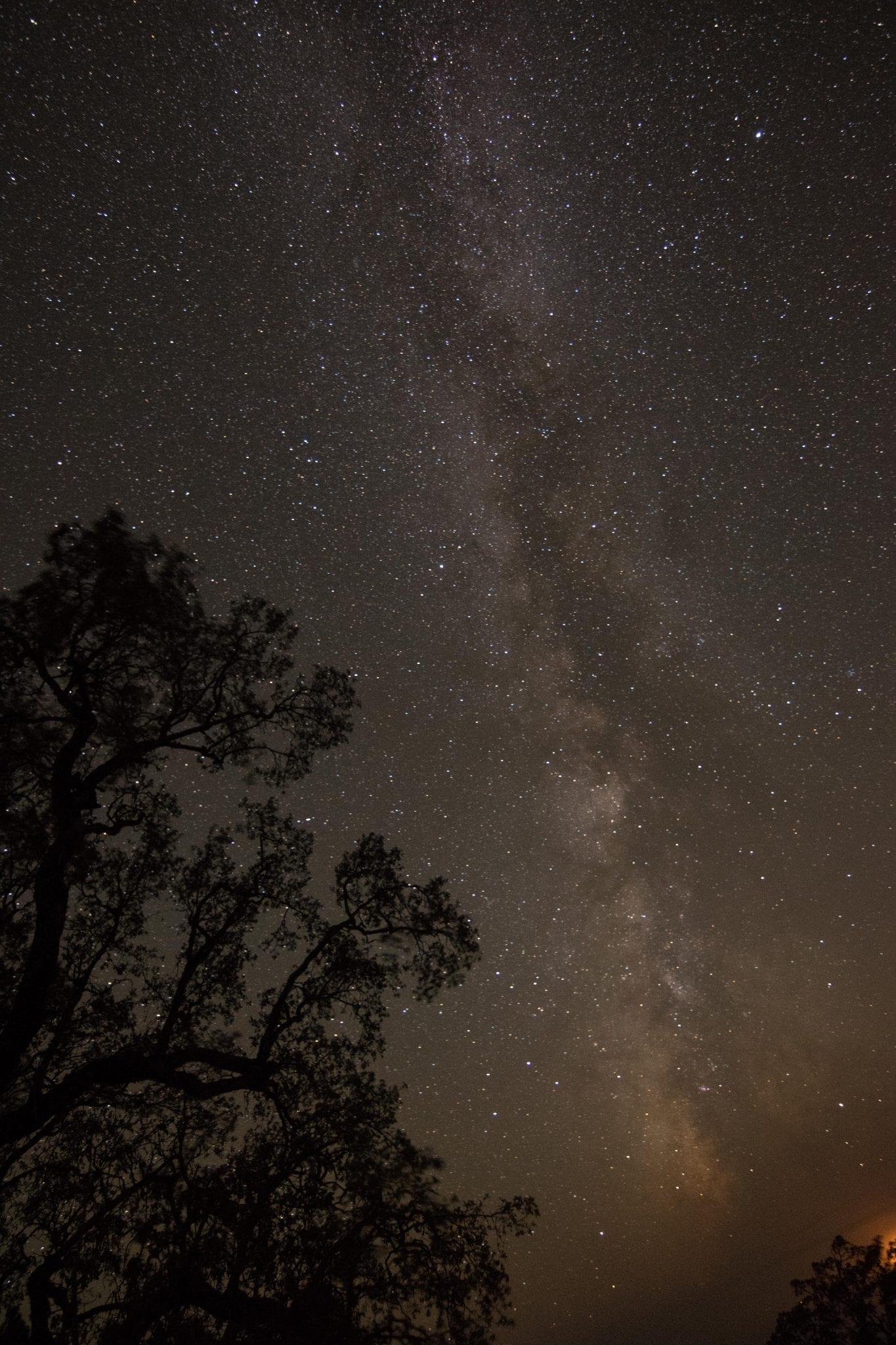 Milky Way milky way live oak stars starry night sky